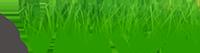Il Verde di Aldo Tomatis Logo